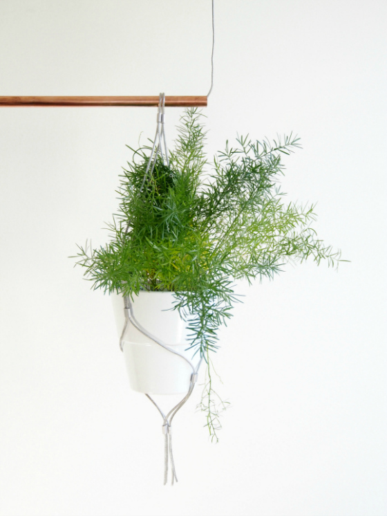 Eclectic Trends Diy Contemporary Indoor Garden