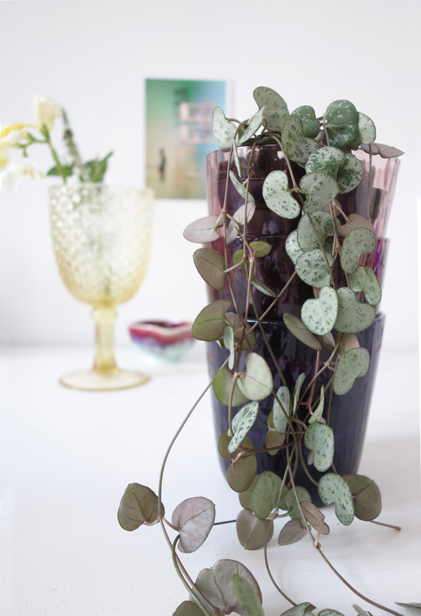 Eclectic Trends for Urban Jungle Bloggers_purple