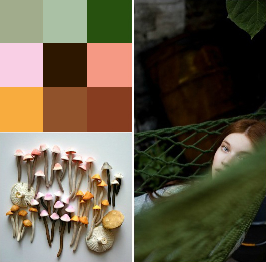 5. into the wild colours