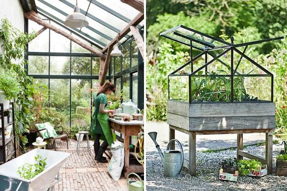 greenhouse micro trend