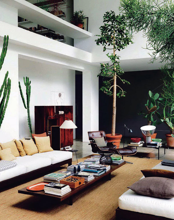 Maurizio Zucchis Urban Jungle Home Eclectic Trends