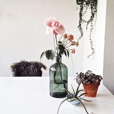 home desk- Gudy Herder
